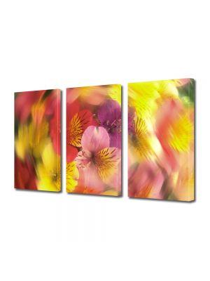 Set Tablouri Multicanvas 3 Piese Flori Vartej de culori