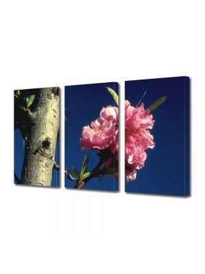 Set Tablouri Multicanvas 3 Piese Flori Viata