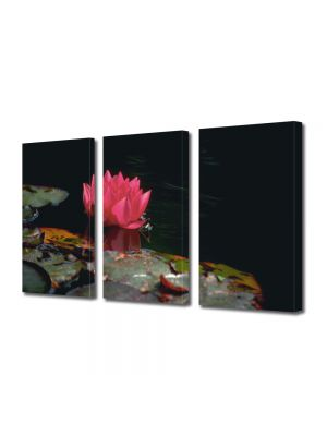 Set Tablouri Multicanvas 3 Piese Flori Floare de nufar