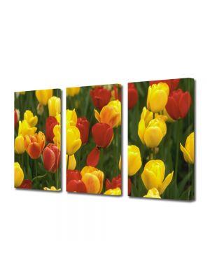 Set Tablouri Multicanvas 3 Piese Flori Lalele Galbene si Rosii
