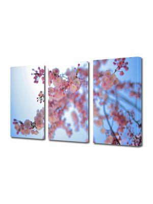 Set Tablouri Multicanvas 3 Piese Flori Infloriti
