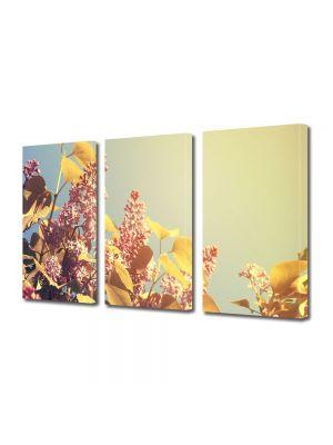 Set Tablouri Multicanvas 3 Piese Flori Soare bland