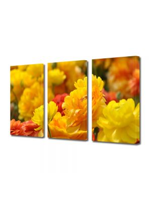 Set Tablouri Multicanvas 3 Piese Flori Nuante de galben