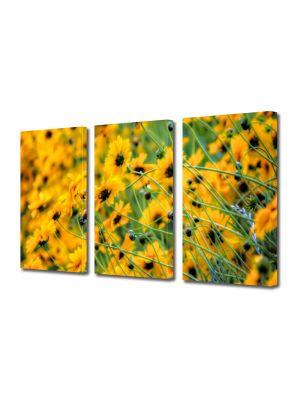 Set Tablouri Multicanvas 3 Piese Flori Abundenta de galben