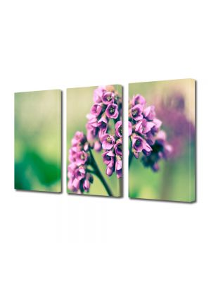 Set Tablouri Multicanvas 3 Piese Flori Buchetel violet