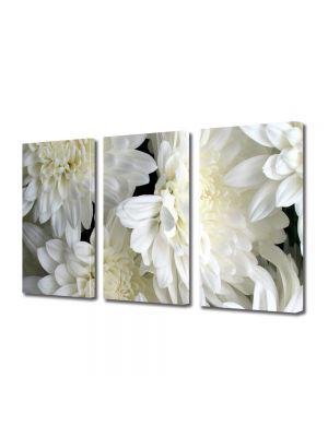 Set Tablouri Multicanvas 3 Piese Flori Inflorit