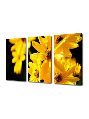 Set Tablouri Multicanvas 3 Piese Flori Floricele galbene