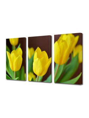Set Tablouri Multicanvas 3 Piese Flori Lalele galbene