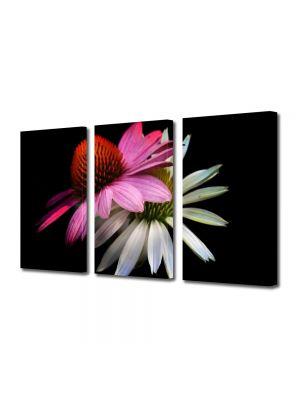 Set Tablouri Multicanvas 3 Piese Flori Flori stilizate