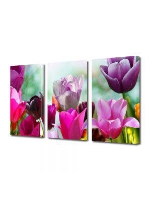 Set Tablouri Multicanvas 3 Piese Flori Lalele Violet