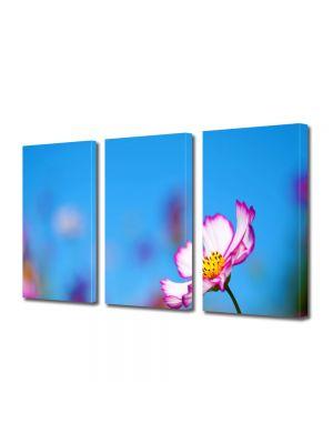 Set Tablouri Multicanvas 3 Piese Flori Floricica singuratica