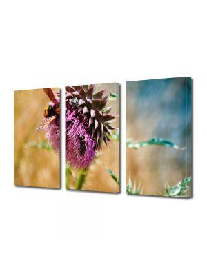 Set Tablouri Multicanvas 3 Piese Flori Floare Gyumri