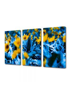 Set Tablouri Multicanvas 3 Piese Flori Flori cu frunze albastre