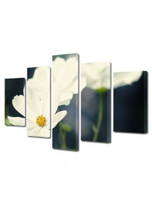 Set Tablouri Multicanvas 5 Piese Flori Flori albicioase