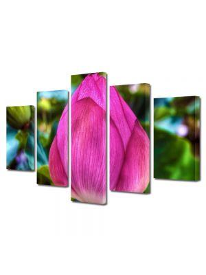 Set Tablouri Multicanvas 5 Piese Flori Floare de Lotus