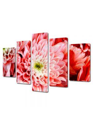 Set Tablouri Multicanvas 5 Piese Flori Crizantema roz