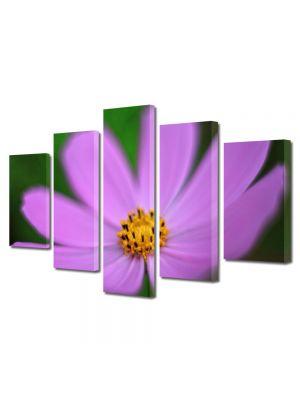 Set Tablouri Multicanvas 5 Piese Flori Floare violet si galbena
