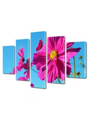 Set Tablouri Multicanvas 5 Piese Flori Fericire rozalie