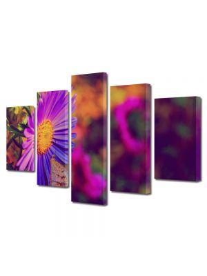 Set Tablouri Multicanvas 5 Piese Flori Floare cu tente violet
