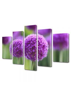 Set Tablouri Multicanvas 5 Piese Flori Flori cu coroana rotunda