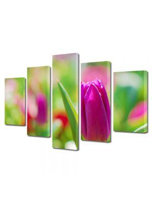 Set Tablouri Multicanvas 5 Piese Flori Lalea