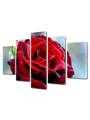 Set Tablouri Multicanvas 5 Piese Flori Trandafir rosu clasic