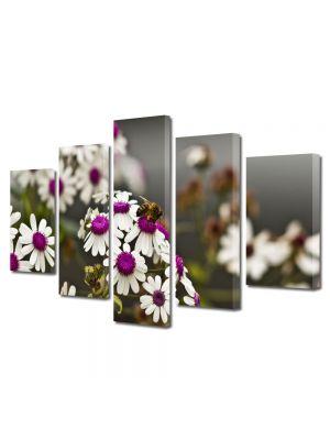 Set Tablouri Multicanvas 5 Piese Flori Albina pe Flori Albe cu Violet