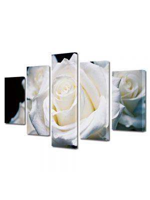 Set Tablouri Multicanvas 5 Piese Flori Trandafiri albi