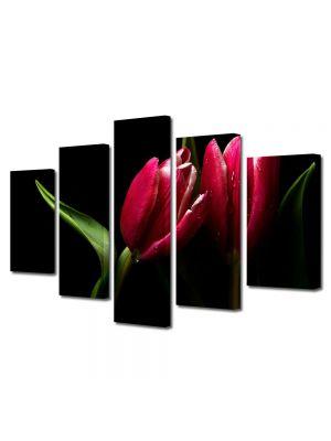 Set Tablouri Multicanvas 5 Piese Flori Lalele elegante