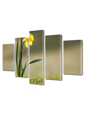 Set Tablouri Multicanvas 5 Piese Flori Narcisa singuratica