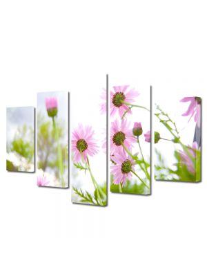 Set Tablouri Multicanvas 5 Piese Flori Flori de vara inflorite