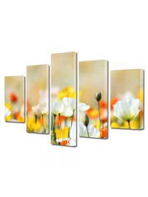 Set Tablouri Multicanvas 5 Piese Flori Flori frumos colorate