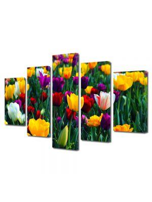 Set Tablouri Multicanvas 5 Piese Flori Paleta de culori