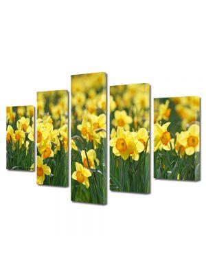 Set Tablouri Multicanvas 5 Piese Flori Narcise galbuie