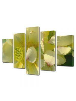 Set Tablouri Multicanvas 5 Piese Flori Flori firave