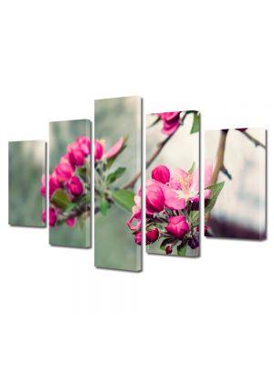 Set Tablouri Multicanvas 5 Piese Flori Frumusetea naturii