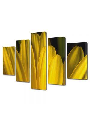 Set Tablouri Multicanvas 5 Piese Flori Petale galbene