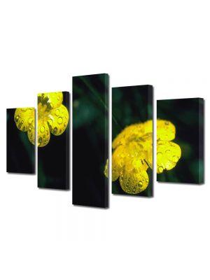 Set Tablouri Multicanvas 5 Piese Flori Doua floricele galbene
