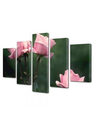 Set Tablouri Multicanvas 5 Piese Flori Roz