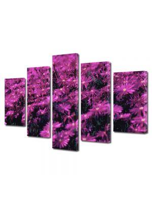 Set Tablouri Multicanvas 5 Piese Flori Violet aprins