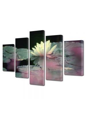 Set Tablouri Multicanvas 5 Piese Flori Floare alba de nufar