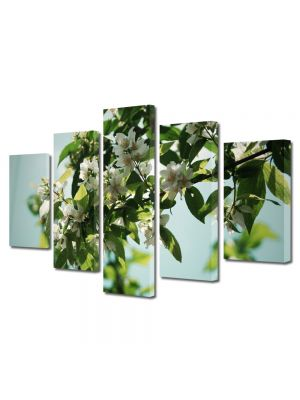 Set Tablouri Multicanvas 5 Piese Flori Flori albe pe crenguta