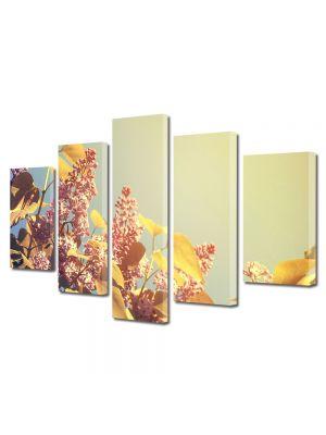 Set Tablouri Multicanvas 5 Piese Flori Soare bland