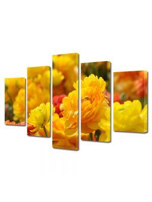 Set Tablouri Multicanvas 5 Piese Flori Nuante de galben