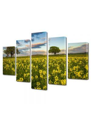 Set Tablouri Multicanvas 5 Piese Flori Camp plin de flori