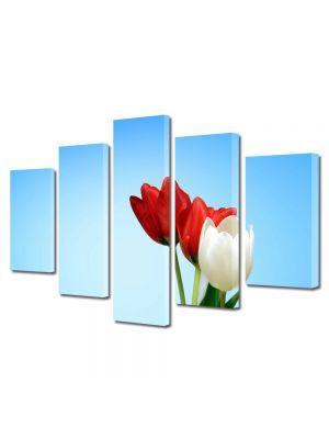 Set Tablouri Multicanvas 5 Piese Flori Lalele speciale