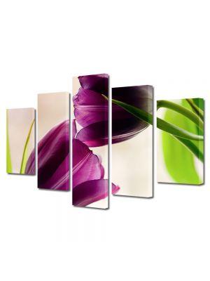 Set Tablouri Multicanvas 5 Piese Flori Doua lalele violet