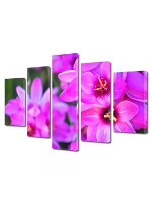 Set Tablouri Multicanvas 5 Piese Flori Culori vibrante