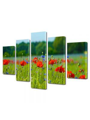 Set Tablouri Multicanvas 5 Piese Flori Pajiste inflorita
