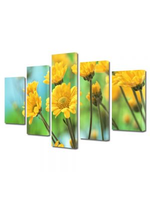 Set Tablouri Multicanvas 5 Piese Flori Crizanteme galbene